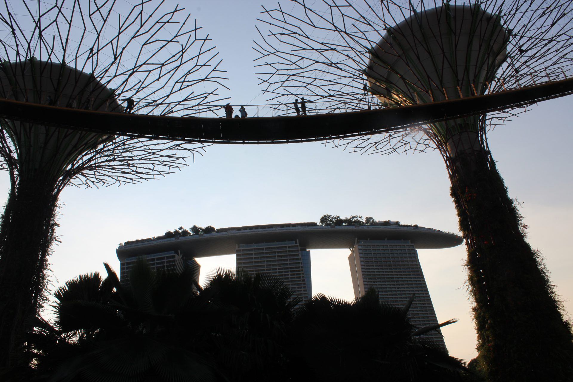 Garden by the Bay und Marina Bay Sands Hotel Singapur